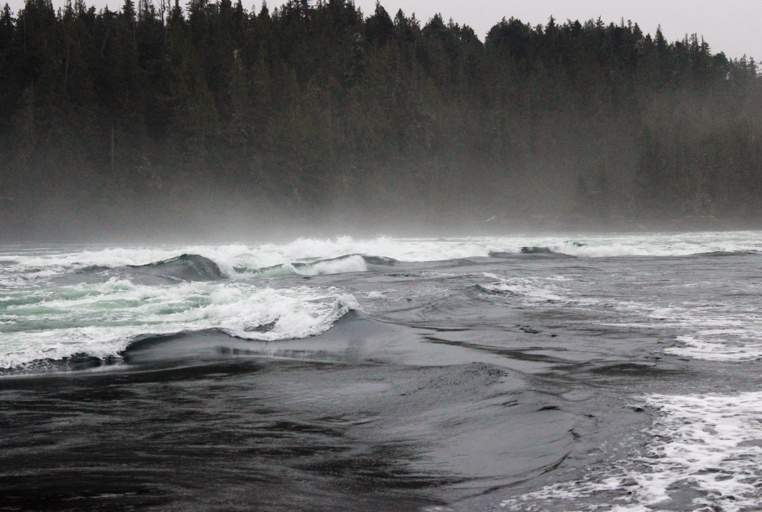 The Nakwakto Rapids were in motion for a special guest of Port Hardy.